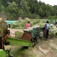 粉碎干湿秸秆牧草揉丝机 卧式牛羊草粉饲料揉丝机