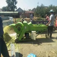 卧式玉米秸秆粉碎揉丝机 自动进料秸秆铡草揉丝机 揉丝机厂家